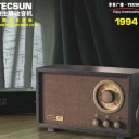 Tecsun 1994 AM FM Classic radio Radio enthusiasts Favorite choice radio