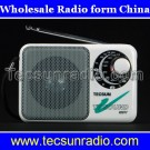 Tecsun R201T pocket AM FM TV Sound Radio