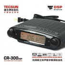 Tecsun CR-300dsp FM Stereo DSP Radio CR300DSP change for MP300